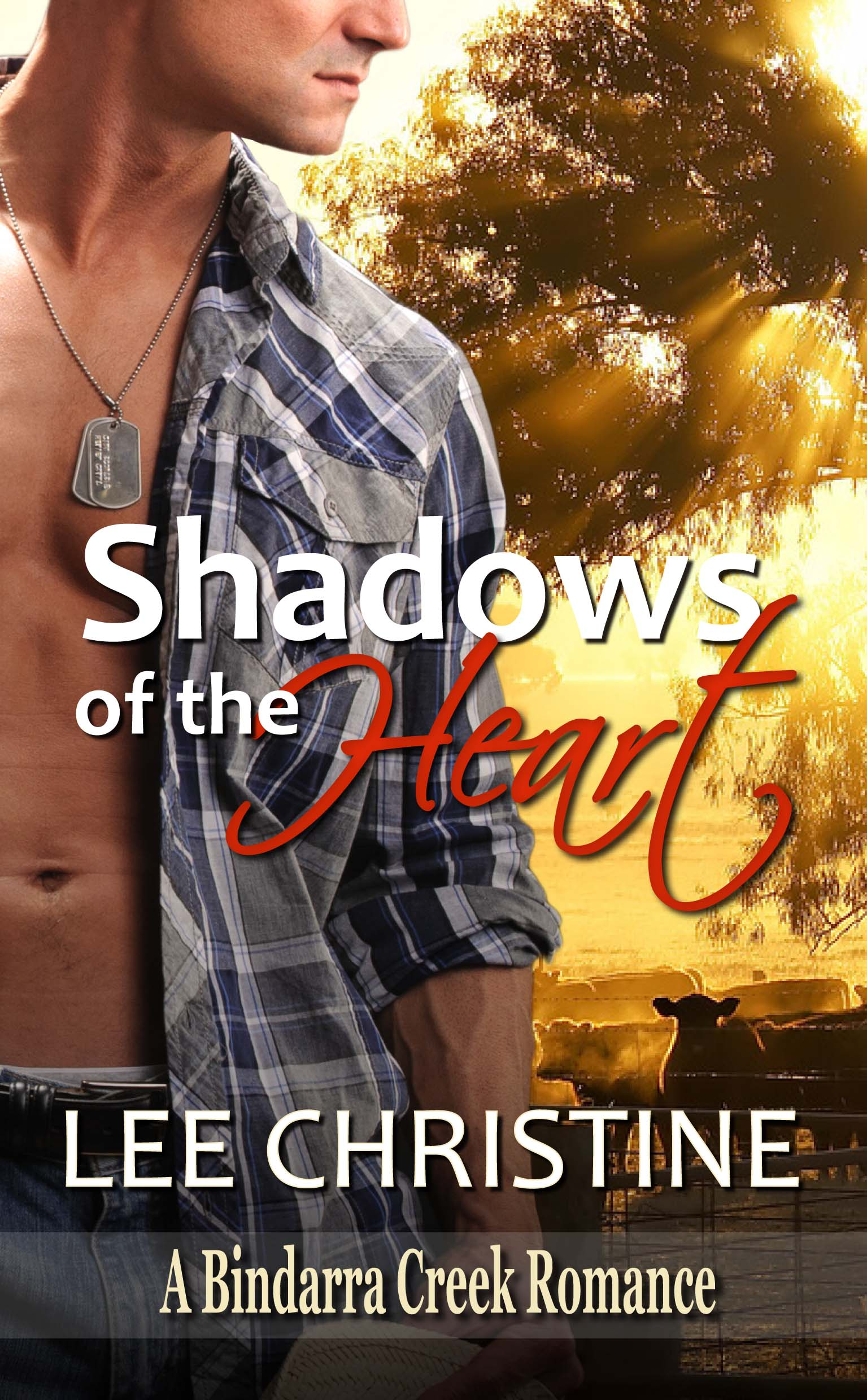 Shadows of the Heart by Lee Christine